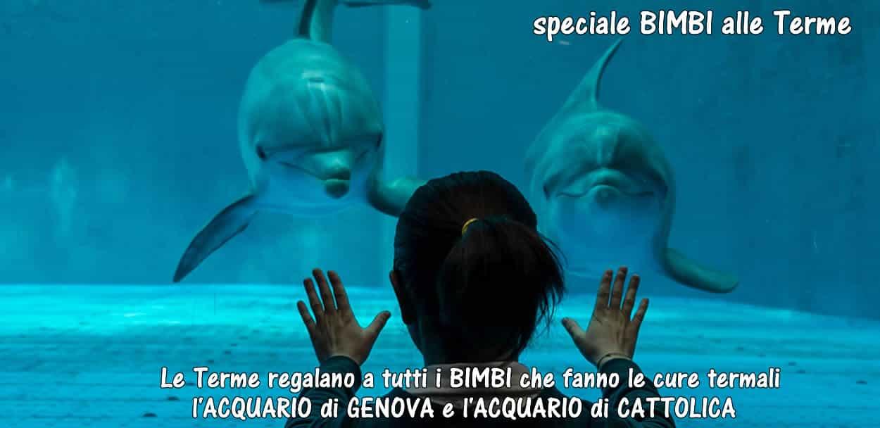 aquario di cattolica