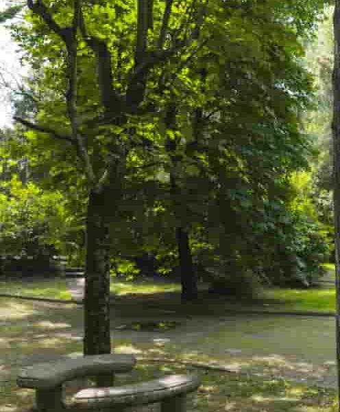 particolare parco termale